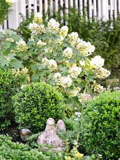 Garden Designs Ideas 2018 : A hen planter in front of boxwood spheres and an oakleaf hydrangea strikes a playful note. Garden Design Images, Landscape Design, Back Gardens, Small Gardens, Fairy Gardens, Most Beautiful Gardens, Amazing Gardens, Bee Friendly Plants, Front Yard Decor
