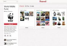 10 Non-Profits Leveraging Pinterest for Social Good: Amnesty International, NRDC, charity: water, UNICEF, AARP, National Wildlife Federation, Jolkona, Grist.org, World Wildlife Fund, Operation Smile.