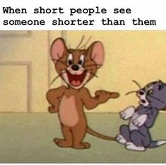 61 Funny Clean Memes - When short people see someone shorter than them. If there is one thing we will agree on is that these memes are suitable for everyone to read. These 61 funny clean memes are rated E for everyone. Funny Shit, 9gag Funny, Crazy Funny Memes, Really Funny Memes, Funny Laugh, Stupid Funny Memes, Funny Relatable Memes, Haha Funny, Funny Stuff