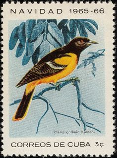 Baltimore Oriole stamps - mainly images - gallery format