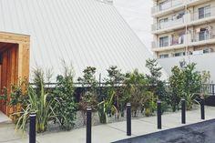 みつわクリニック:TREEFORTE Landscape Design work Landscape Design, Sidewalk, Landscape Designs, Side Walkway, Sidewalks, Pavement, Walkways, Landscaping