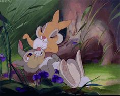 Bambi Thumper and Miss Bunny Disney Pixar, Disney Amor, Animation Disney, Art Disney, Disney Cartoons, Disney Love, Disney Magic, Disney Characters, Funny Cartoons