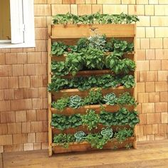 Cedar Vertical Planter (this one is from Williams Sonoma so it's great, but I'd be much better off making one for 1/10th the cost)
