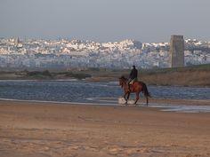 Sightseeing Conil de la Frontera Cadiz