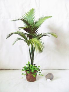 PARLOUR PALM HOUSE PLANT FOR DOLLS HOUSE OR GARDEN 12TH SCALE