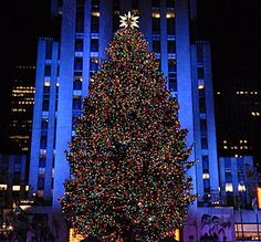 One day I will see this for Christmas. One Day I Will, Beyond Words, Time Of The Year, Holiday Travel, Wonderful Time, My Dream, To Go, Display, World