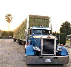 Millions of Semi Trucks - Peterbilt - Peterbilt 379, Peterbilt Trucks, Mack Trucks, Semi Trucks, Cool Trucks, Big Trucks, Trucks And Girls, Vintage Trucks, Custom Trucks