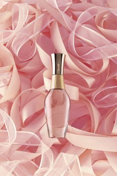 still life, fragrance, perfume, woman, scent, ribbons, delicacy