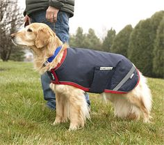 Just found this Waterproof+Dog+Jacket+-+Reflective+Dog+Raincoat+--+Orvis on Orvis.com!
