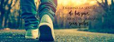 """Todos tus caminos sean rectos - Proverbios 4:26 """"Examina la senda de tus pies, Y…"""
