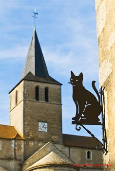 Black Cat sign seen against the ancient church in the beautiful old town of…