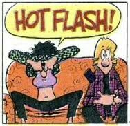 Hot Flashes!!! Hot Flash Remedies, Menopause Humor, Night Sweats, Hot Flashes, Comics, Funny, Madness, Style, Humor