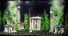 Atlantis Saltwater Tank, Saltwater Aquarium, Aquarium Fish Tank, Freshwater Aquarium, Fish Aquarium Decorations, Aquarium Ideas, Fish Tank Themes, Architecture Design, Neon Tetra