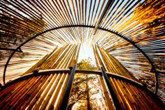 """16x24 - Surreal Fine Art, Anyang South Korea landscape, architectural color nature photography """"Bamboo Rockets"""""""