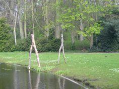 Movement toward water (wood)