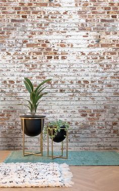 Industrial luxe is the perfect combination of rich rustic textures and luxury. The pairing of something rough and ready, presentented in a stylish and chic way, creates something truly magnificent and makes a room look and feel extraordinary, and you can achieve just that with Murals Wallpaper's Brick Effect Wallpaper Collection. #wallpaper #murals #interior #design #homedecor #inspiration #ihavethisthingwithwalls