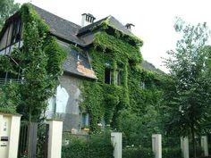 Suchardova vila v zeleni