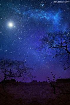 Desert Moon & Stars