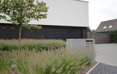 Moderne voortuin met betonnen oprit en siergrassen.