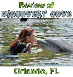 Wanting to visit Discovery Cove in Orlando, FL?  Here's a great review from one of my readers!