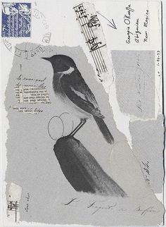 A postcard to Georgia O'Keeffe from Lenore Tawney in January 1973. Proof that the ancient Portland tradition of putting birds on things may have desert roots.