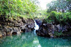 10 Kauai Roadside Stops