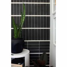 2x8 Subway Tiles by Zia Tile | Handmade Tile for Everyone