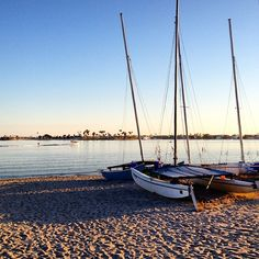 Late afternoon at Sail Bay in #SanDiego. Photo courtesy of crams on Instagram.