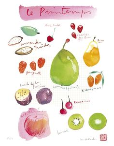 lovely french springtime fruit watercolor illustration