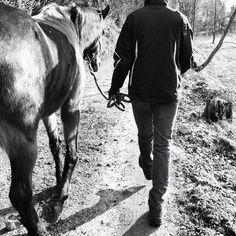 #boy #man #walking #horse #horses #riding #passion #follow #horselover #nature #instanature #feeling #black #white #love #pet #petstagram #friend #forever #tenderness #sexyanimal #lake #novellaorchidea #novella #orchidea #raccontierotici #racconti #ebook
