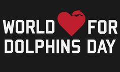 "Today, thousands of people around the world are joining their voices together in a call for compassion for dolphins being brutally captured and killed in Taiji, Japan. On the eve of Valentine's Day, Sea Shepherd Conservation Society's second annual ""World Love for Dolphins Day"" will bring the world's love and reverence for dolphins to ""Japan's doorstep"" at Japanese embassies and consulates across the U.S. and overseas."