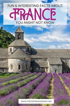 Want to learn more about France? Here are 52 interesting facts about France you may not have known about its history, people, fashion, inventions and food. #travelguide #france #factsaboutfrance Travel Maps, Paris Travel, France Travel, Travel Destinations, France Photography, Travel Photography, Facts About France, Paris Bucket List, France Outfits