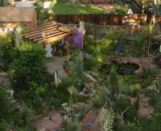 Gardening the microclimates of your home Fine Gardening, Gardening Tips, Permaculture, Garden Beds, Trellis, Garden Bridge, Paths, Garden Design, Pergola