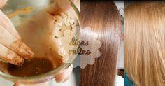 Incrível! Canela: uma especiaria que dará um toque especial aos seus cabelos! - # #cabelo #canela