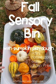 fall festival- fall sensory bin {with homemade pumpkin play dough! Fall Sensory Bin, Baby Sensory, Sensory Bins, Sensory Activities, Sensory Play, Infant Activities, Sensory Table, Infant Sensory, Indoor Activities