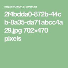 2f4bdda0-872b-44cb-8a35-da71abcc4a29.jpg 702×470 pixels