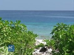A Greek scholar warns that a potential conflict in the South China Sea will benefit no one.  George Tzogopoulos, a lecturer of the European Institute and the Democritus University of Thrace in Greece, on Wednesday said what is challenging now is to preserve peace in the South China Sea.  The Chinese government on Wednesday issued a white paper to expound on its position, which calls for settling relevant disputes between China and the Philippines in the South China Sea through negotiation…
