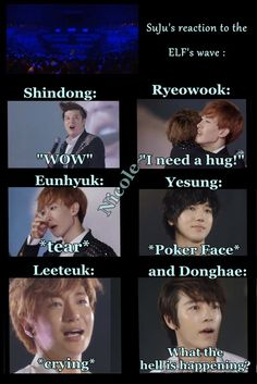 Super Junior's reaction to ocean wave/Donghae why you so dumb?! And lol Yesung's poker face