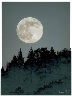 TOP: emotivas y sorprendentes imágenes de la Súper Luna de este 2013 (FOTOS)   Pijamasurf