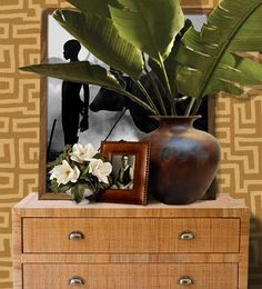 Tropical-chic Design...vignette by designer Stuart Membery. recouvrir une commode de rabanne