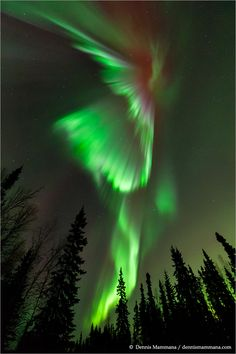 Alaska Aurora Borealis 2014 | Astronomical Tours by MWT Associates | Melitatrips