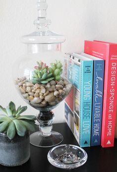 How to Create a Terrarium Using Faux Succulents | Ravishing Revamp