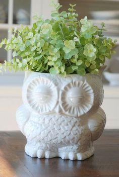 owl planter