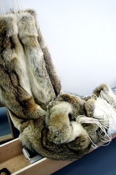 Coyote Fur Hammock by BLESS