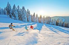 Beim #Skifahren und #Snowboarden im #Mühlviertel den #Weitblick genießen. Weitere Informationen zu #Skiurlaub im Mühlviertel in #Österreich unter www.muehlviertel.at/skifahren - ©Oberösterreich Tourismus/Erber Mountains, Nature, Travel, Snowboarding Holidays, Ski Resorts, Ski Trips, Ski, Tourism, Pictures