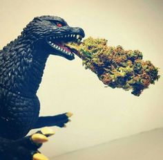 """Gives new meaning to the Blue Oyster Cult song!! The last verse: """"History shows again and again  How nature points out the folly of men  Godzilla!"""" Rock On, Godzilla!!!!"""