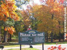Photo Feature - Pelham Bay Park, Bronx Autumn 2004 Photos - New York Pelham Bay, Bronx Nyc, The Boogie, Westchester County, Staten Island, Large Photos, New York City, Park, New York