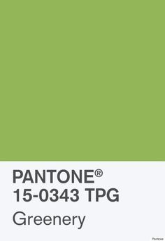 Kitchen Wall Color Pms  Or Pms  Pantone Color Chart