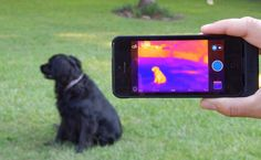 A Review of the iPhone Infrared Camera: The FLIR One.  I used to work at FLIR!!!