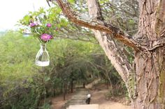 Thulamela Bed and breakfast Hazyview in Hazyview, Mpumalanga. Romantic Self catering accommodation in Hazyview